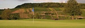 Avati Eesti Golfimängijate Turg