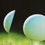 Ajakirja Golf netisõnastik seletab lahti golfimõisted