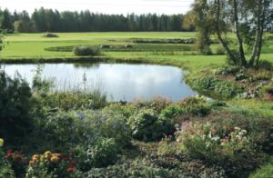 ÖÖGOLF! Ojasaare Öö möödus aktiivses golfimängus