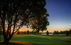 Otepää-golfiväljak-6