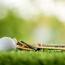 LAV-i golfimängijal avastati uus koroonaviirus