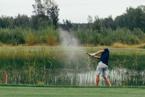 EBS golf 0139 9115